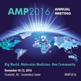 AMP 2016